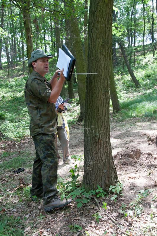"""Warsztat """"Wycena lasów i drzewostanów techniką szacunku brakarskiego"""" w 2015 roku"""